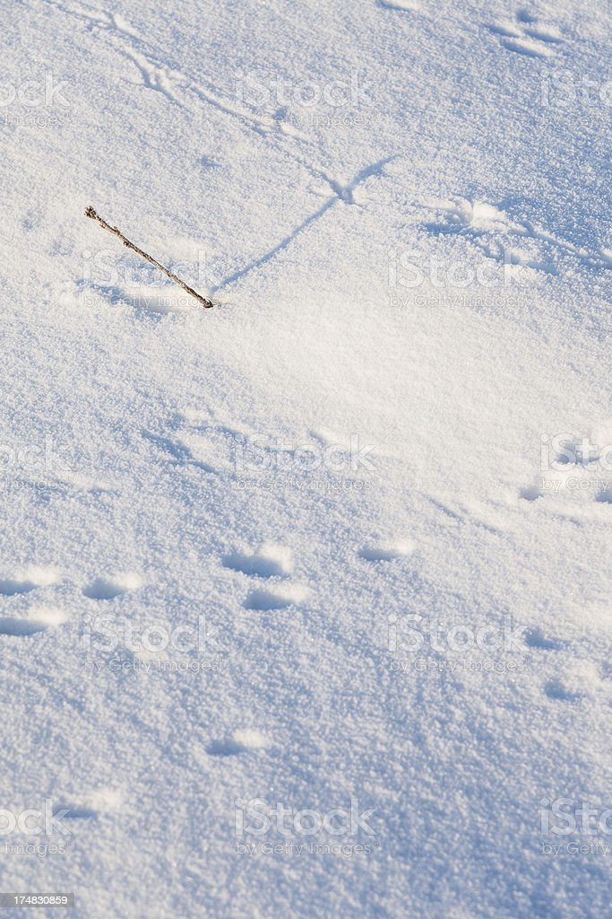 Snow pattern royalty-free stock photo