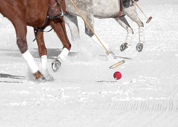 snow polo - kellyjhall stock pictures, royalty-free photos & images