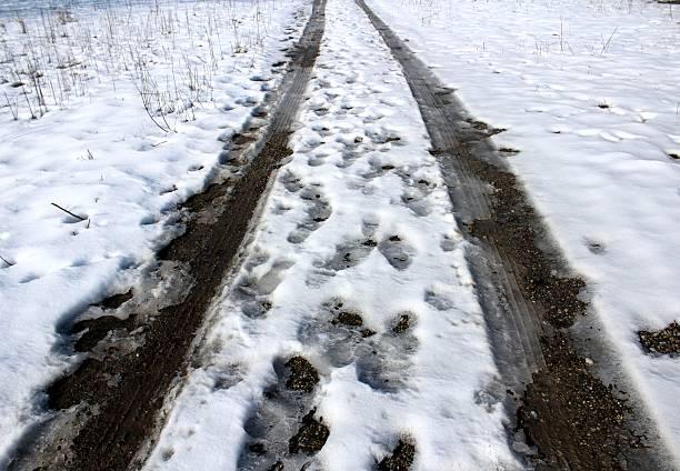 Snow prints stock photo