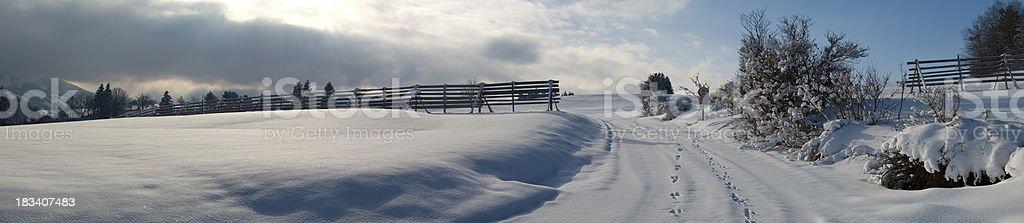 Snow Road XXL Winter Landscape Panorama royalty-free stock photo