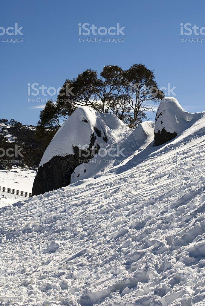 Snow Scene royalty-free stock photo