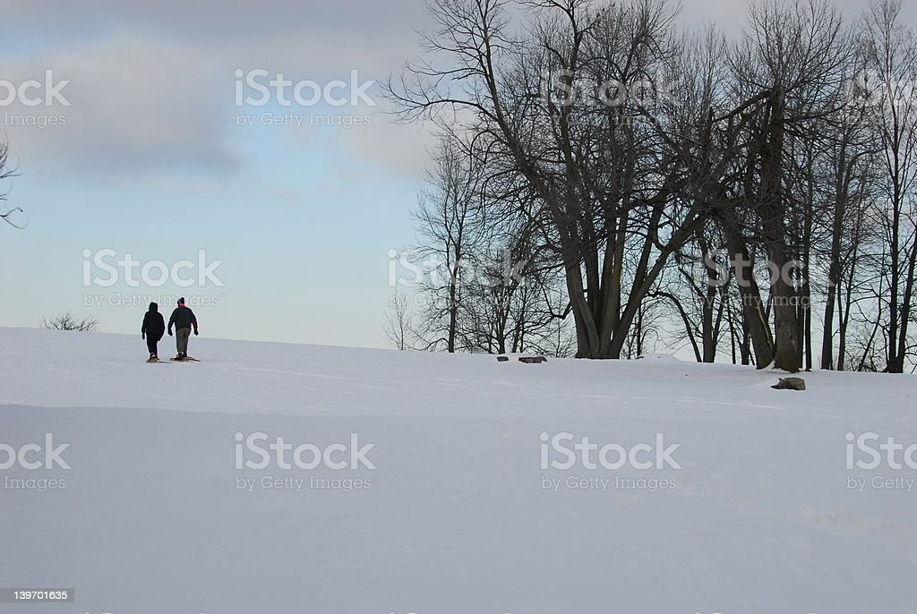 snow shoeing in park royalty-free stock photo