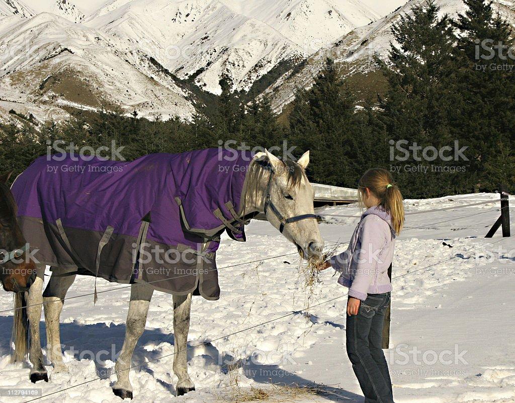 Snow snack stock photo