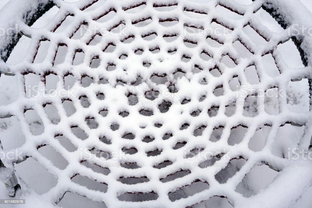 snow spider web stock photo
