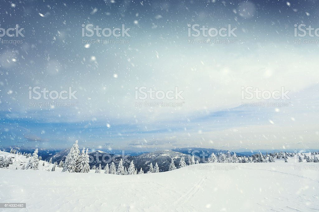 Snow Storm stock photo