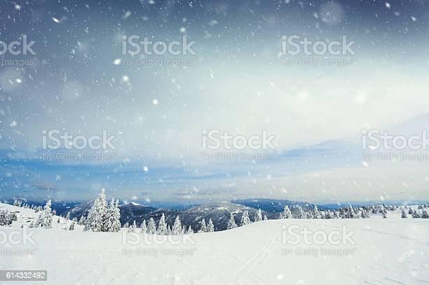 Photo of Snow Storm