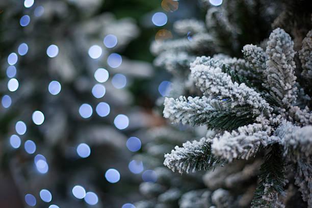 snow tree with christmas lights stock photo