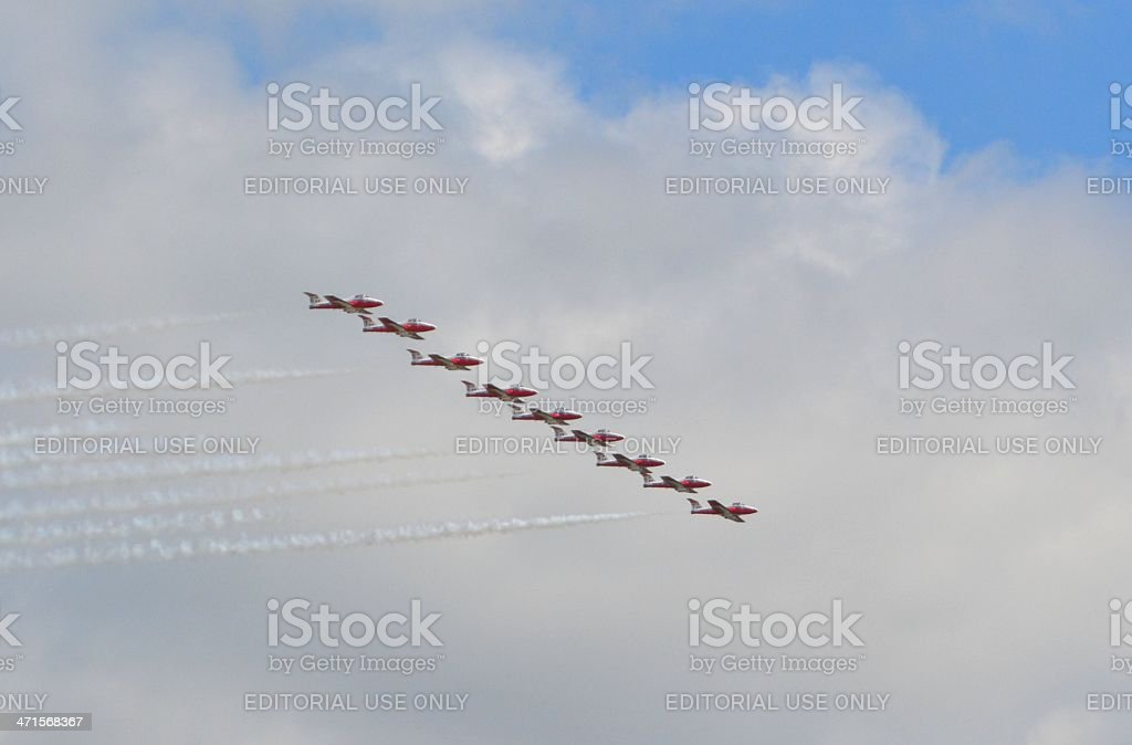 Snowbirds royalty-free stock photo