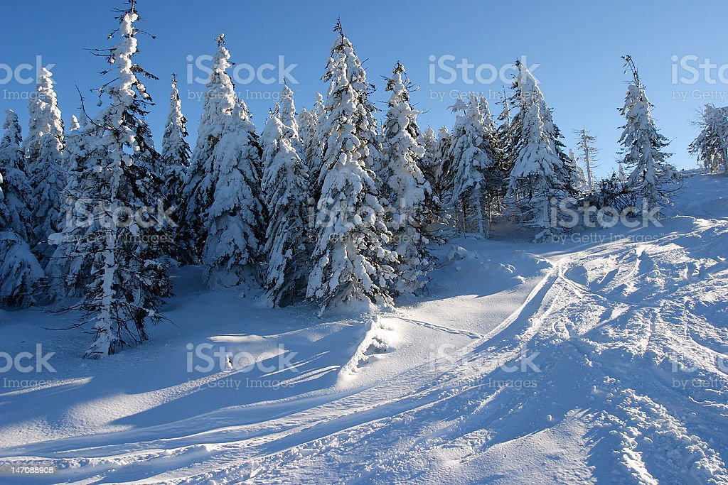 Snowboard tracks on the slopes of Skrzyczne mountain. royalty-free stock photo