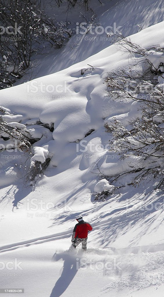 snowboarder in deep powder stock photo