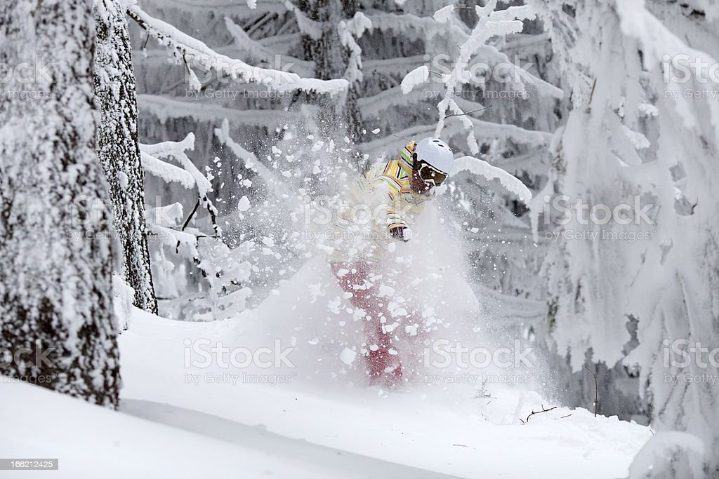 Snowboarder Jumping in Forest royalty-free stock photo