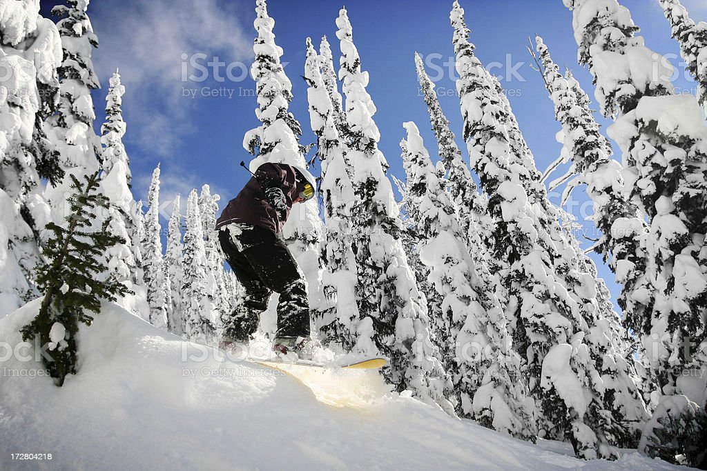 Snowboarding Fun royalty-free stock photo