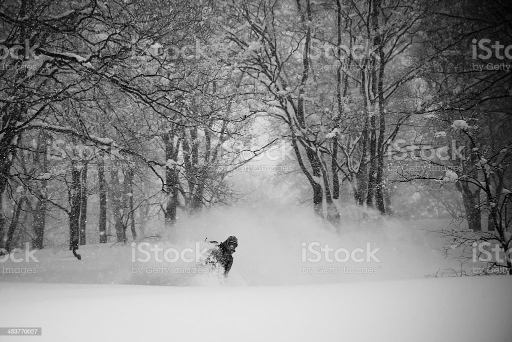 Snowboarding in magnificent deep snow in forest stock photo