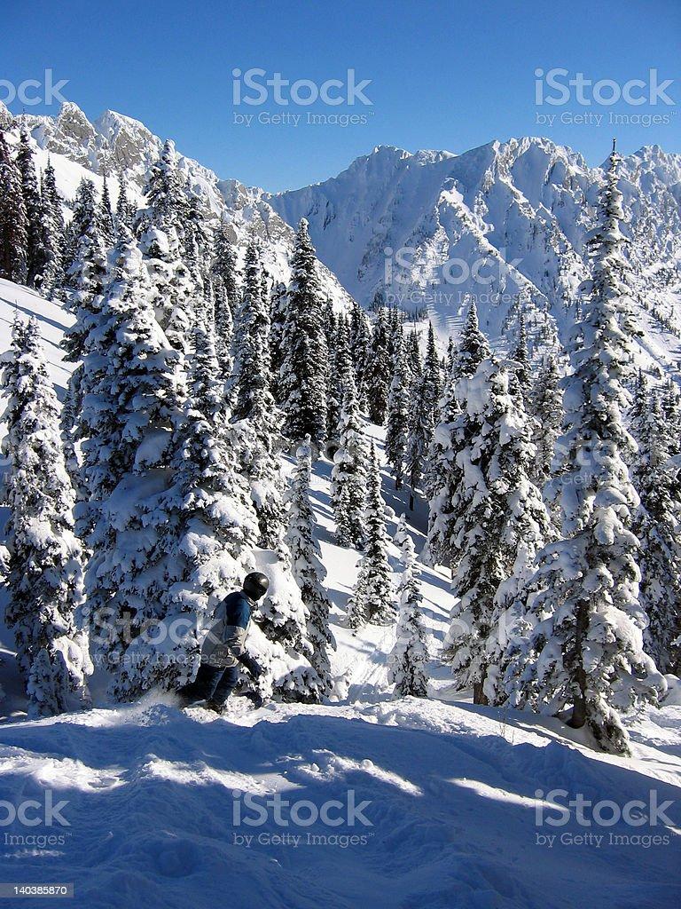 Snowboarding the Rocky Mountain Backcountry royalty-free stock photo