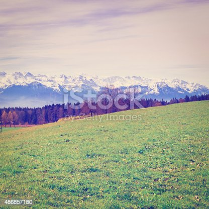 Meadow on the Background of Snow-capped Alps in Switzerland, Retro Effect