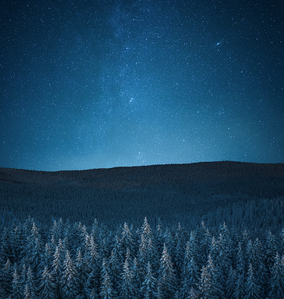 Aerial view on snowcapped pine forest under starry night sky.