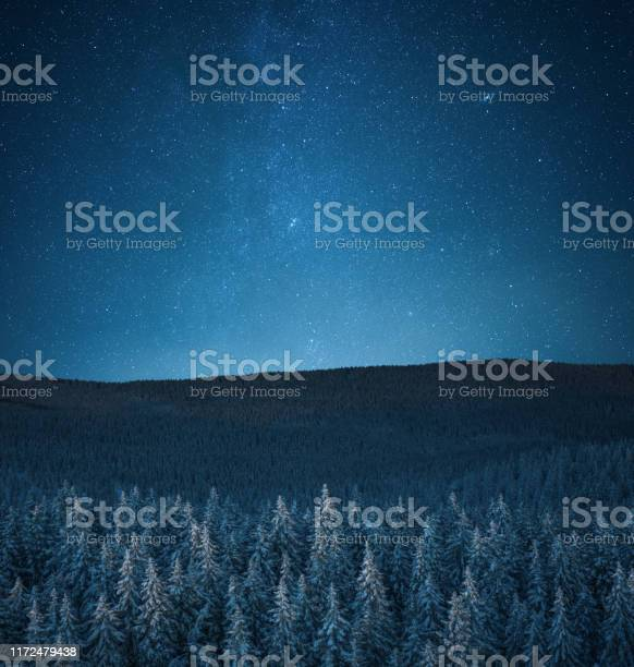 Photo of Snowcapped Forest Under The Stars