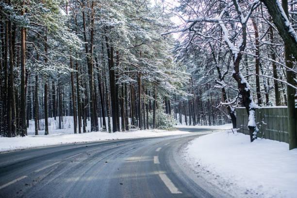 verschneite asphaltstraße durch den pinienwald an einem sonnigen wintertag, estland - schnelles weihnachtsessen stock-fotos und bilder