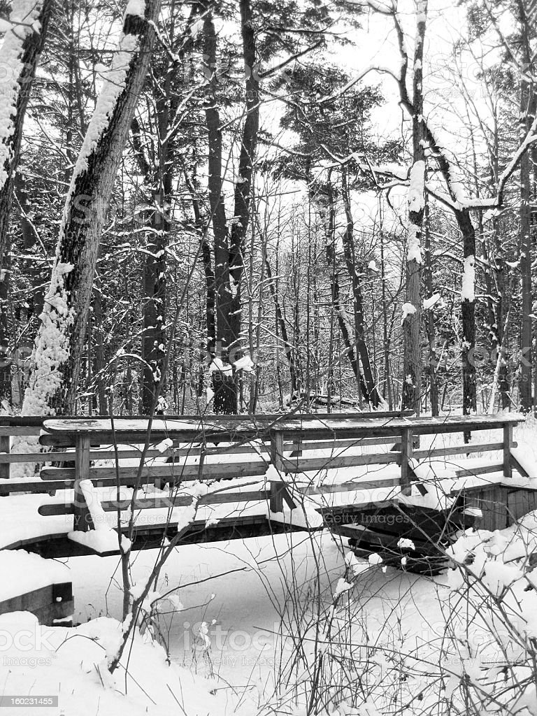 Snow-covered bridge in forest royalty-free stock photo