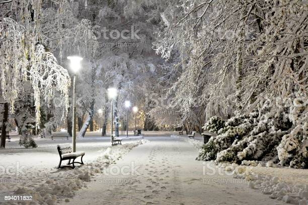 Photo of A snow-covered city park at night. Winter.