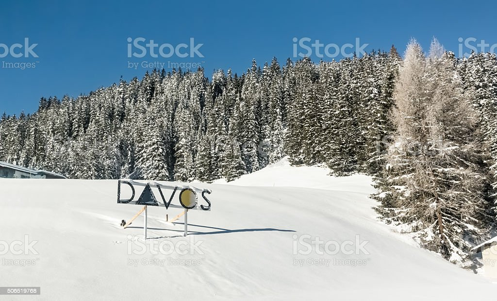 Snow-covered fir trees stock photo