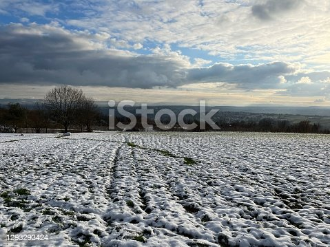 istock A snow-covered meadow near the Katharinenlinde in Esslingen 1293293424