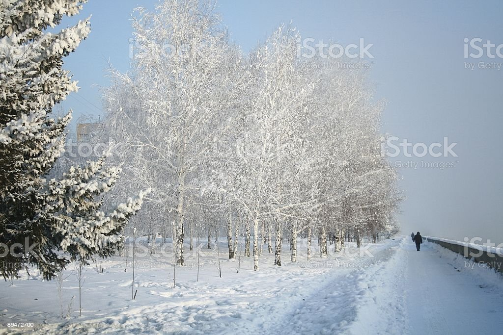 Snow-covered path royalty-free stock photo