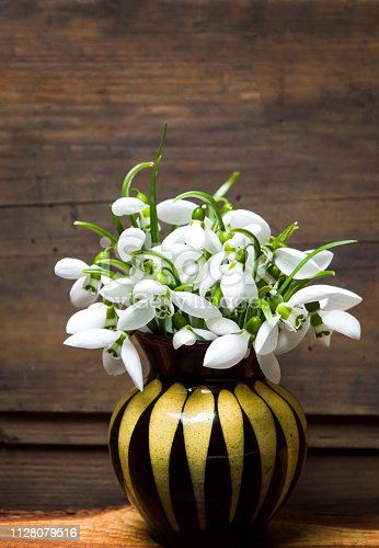 Snowdrop flowers in a small vase