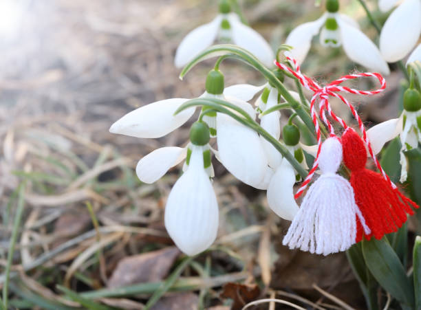 Snowdrop flowers with martenitsa or martisor. stock photo