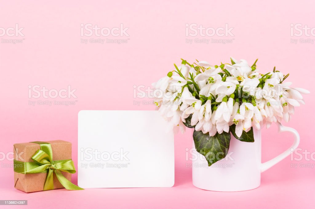 Snowdrops, blank note, gift box.note, flowers and gift. Copy space