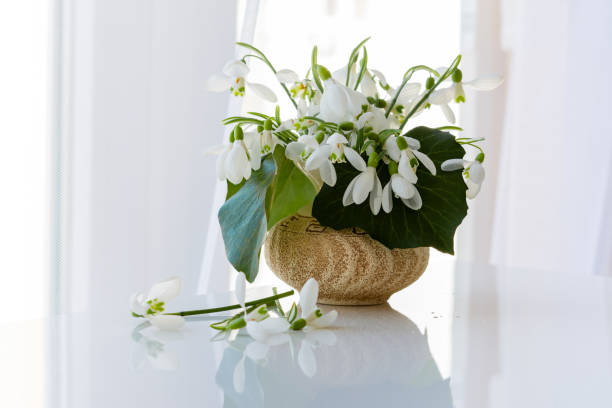 snowdrops in a vase on the table - snowdrop stock pictures, royalty-free photos & images