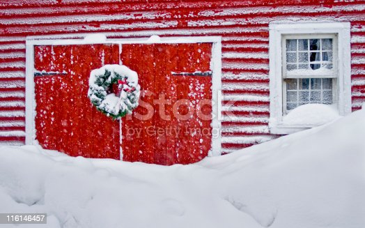 istock Snowed in at Christmas 116146457