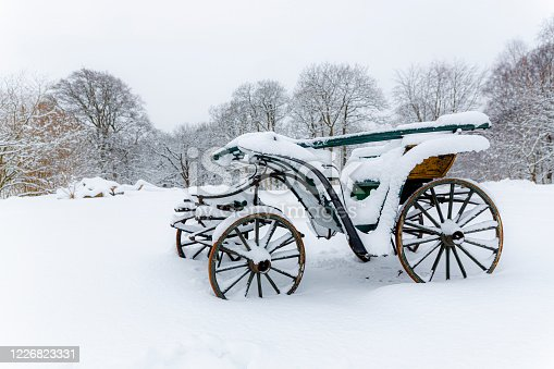 Snowembrasedhorse carriage, against a white wall of snow with blistering branches