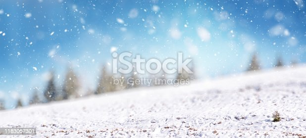 Winter landscape with beautiful snowfall