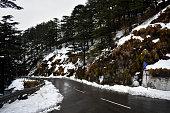 istock Snowfall in Shimla 1264506576