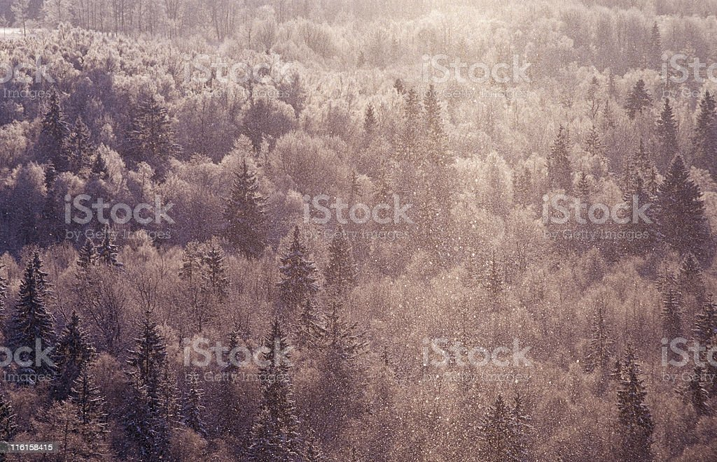 snowfall in the valley royalty-free stock photo