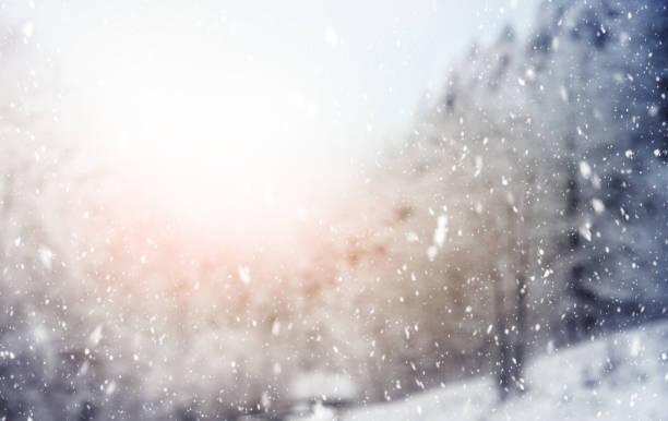 Snowfall in the woods in italian alps mountains picture id1182119942?b=1&k=6&m=1182119942&s=612x612&w=0&h=g7wmswjhdoyuspcdheev8dowhv te bfesdk9xzipug=
