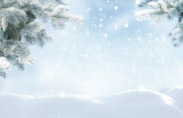 schneefall im winterwald. wunderschöne landschaft mit schneebedeckten tannenbäumen und schneeverwehungen. frohe weihnachten und glückliches neues jahr gruß hintergrund mit kopierraum. wintermärchen. - schneeflocke sonnenaufgang stock-fotos und bilder