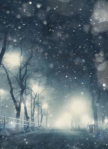 Nevadas en la ciudad de noche - foto de stock