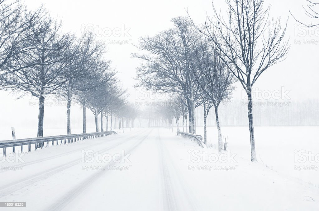 Snowfall on a country road royalty-free stock photo