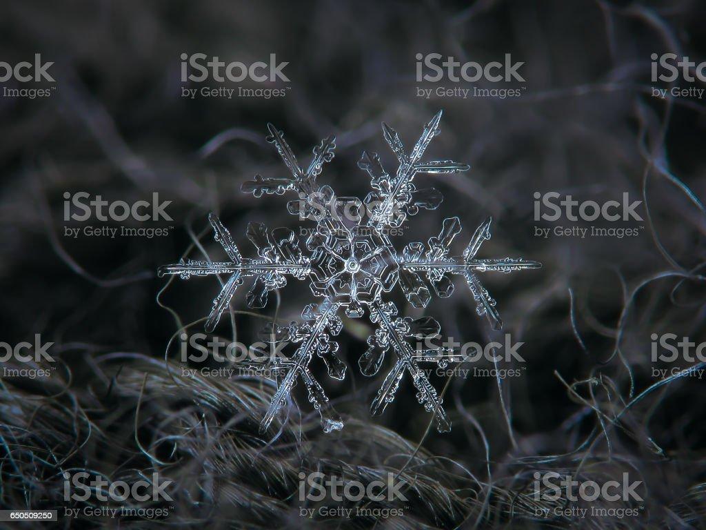 Snowflake glitters on dark gray textured background stock photo