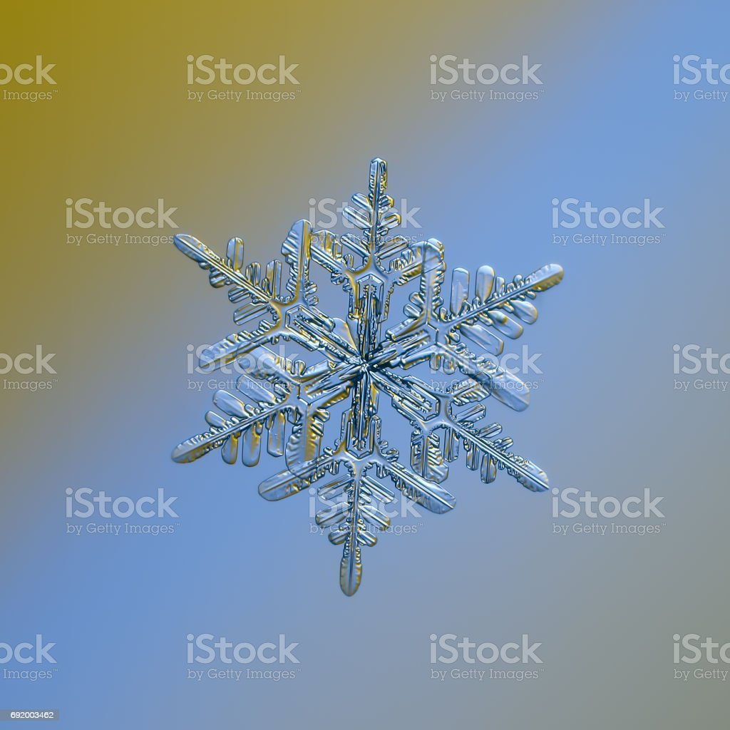 Snowflake glitters on smooth gradient background stock photo