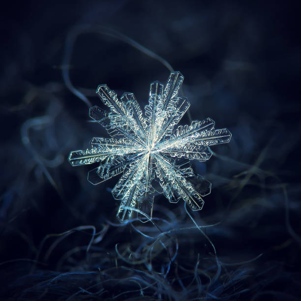 Snowflake glowingg on dark textured background picture id1098035534?b=1&k=6&m=1098035534&s=612x612&w=0&h=gfrkehj0m tuc45hqxjl6u3pxg lyearxtbccwmvtvw=