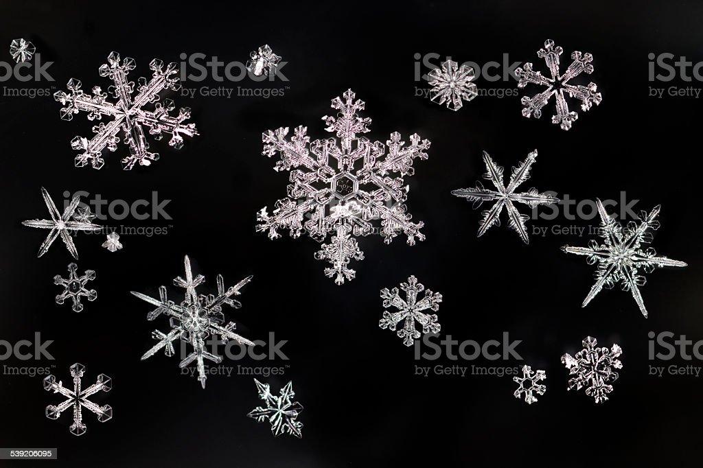 Snowflake ice crystals close-up Denver Colorado stock photo