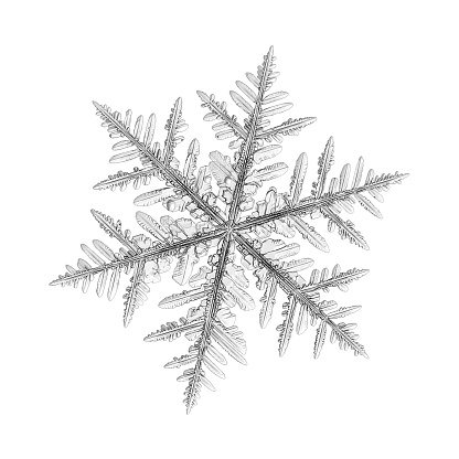 Snowflake isolated on white background. Macro photo of real snow crystal: large stellar dendrite with fine hexagonal symmetry, long elegant arms, complex, ornate shape and glossy relief surface.