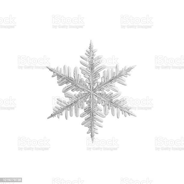 Snowflake isolated on white background picture id1019279738?b=1&k=6&m=1019279738&s=612x612&h=muie9lcw0wyhxcd9f7oauf3glqxxffldwe2zlglbiby=