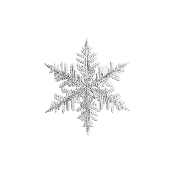 Snowflake isolated on white background picture id1019279738?b=1&k=6&m=1019279738&s=612x612&w=0&h=siu6idi8ds0 zc1 ltbvpijz  izkg2rloqasihdeje=