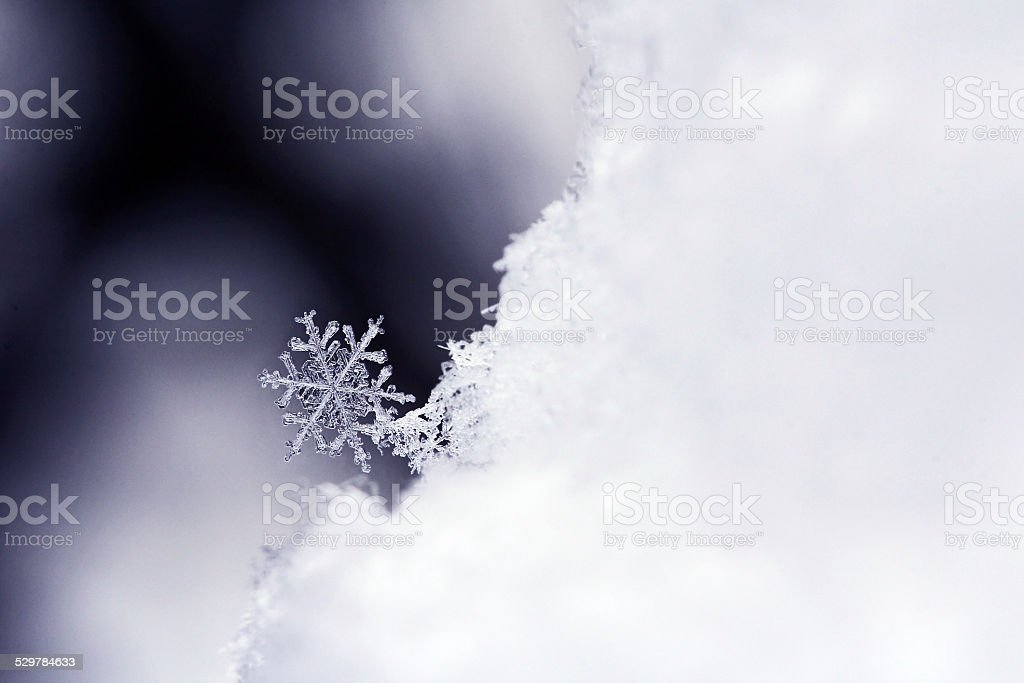 Schneeflocke-Schneekristall – Foto