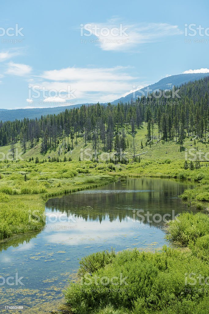 Snowflake Springs in Big Sky Montana Valley stock photo