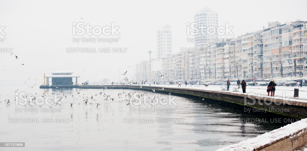 Snowing Again royalty-free stock photo
